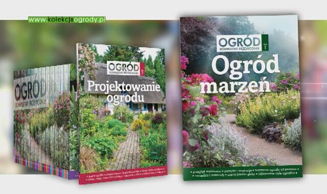 Kolekcja Ogród Kompletny Przewodnik Oficjalna Strona Hgtv